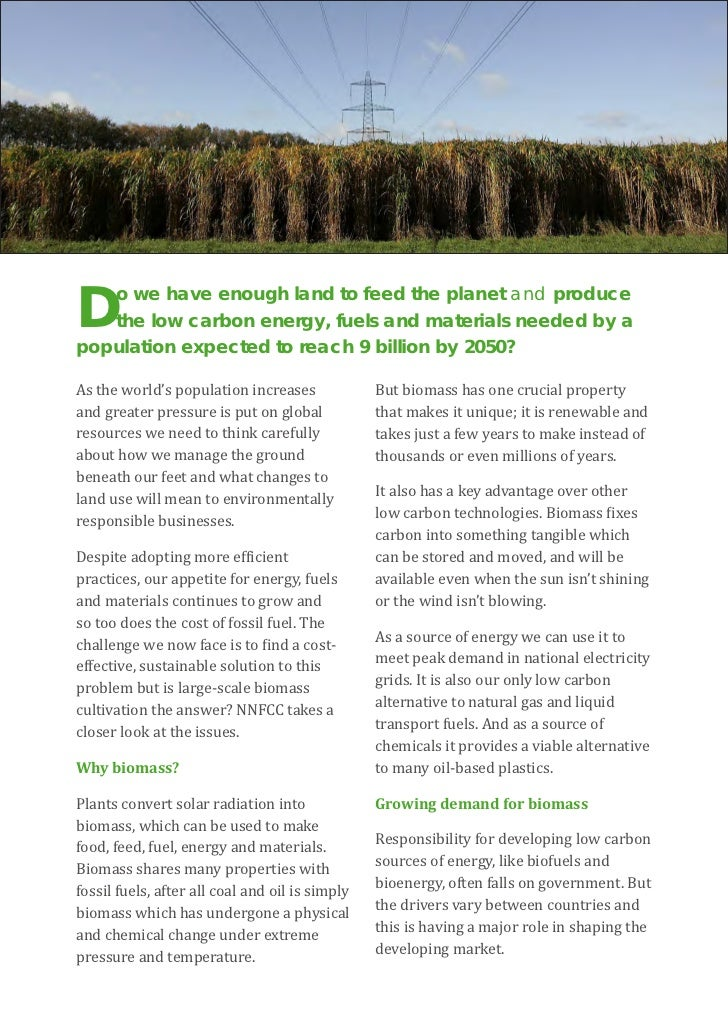 the role of biofuels The role of bioenergy in a climate-changing world  if the first five principles are respected and if biofuels can play a crucial role in mitigating dangerous climate change then, depending on certain key considerations, there is a duty to develop such biofuels.