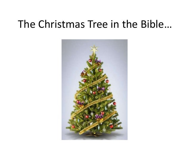 the christmas tree in the bible