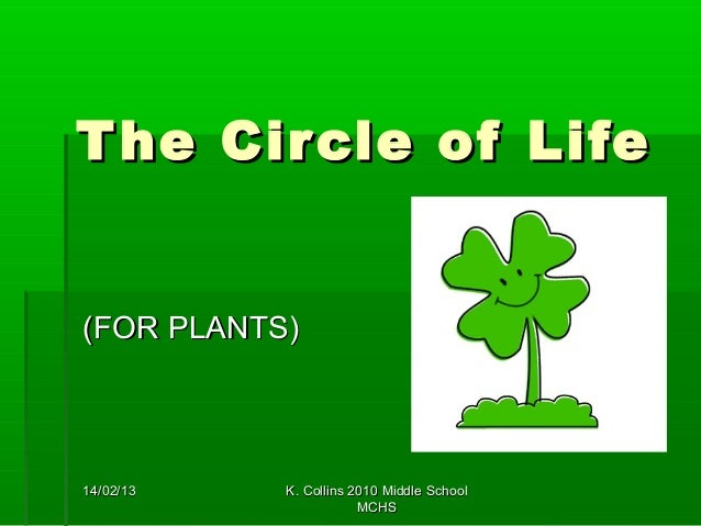 T he Cir cle of Life(FOR PLANTS)14/02/13   K. Collins 2010 Middle School                       MCHS
