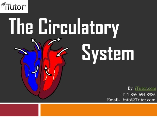 The CirculatorySystemT- 1-855-694-8886Email- info@iTutor.comBy iTutor.com