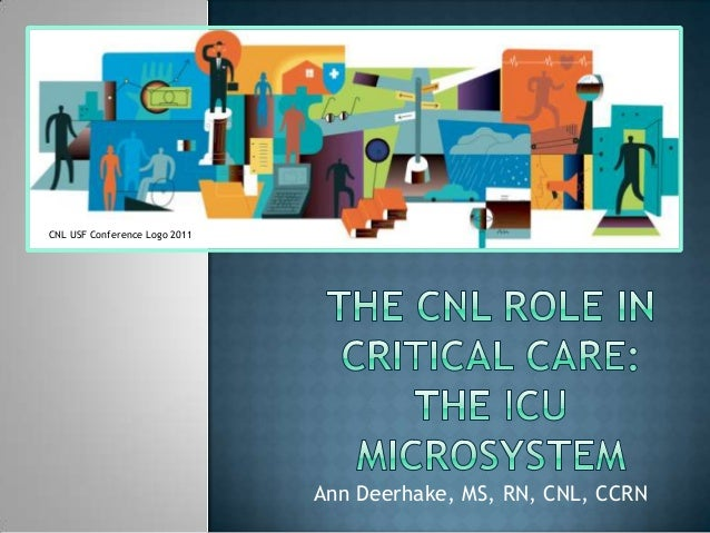 Ann Deerhake, MS, RN, CNL, CCRN CNL USF Conference Logo 2011