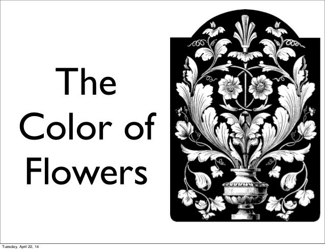The Color of Flowers Tuesday, April 22, 14