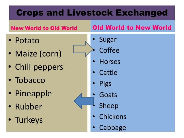 Columbian Exchange Graph Related Keywords Suggestions Columbian