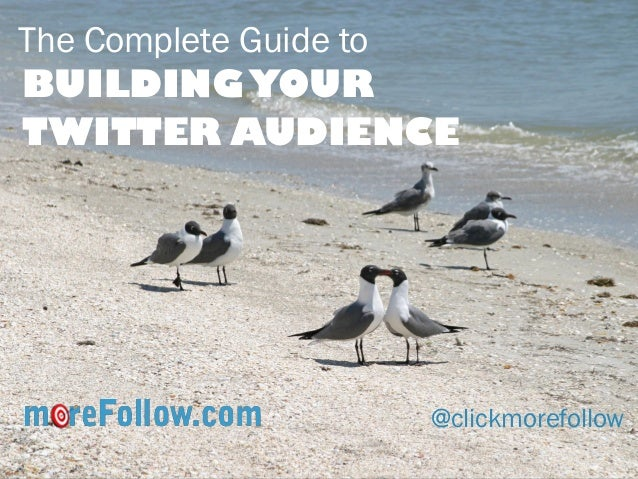 The Complete Guide to  BUILDING YOUR TWITTER AUDIENCE  @clickmorefollow