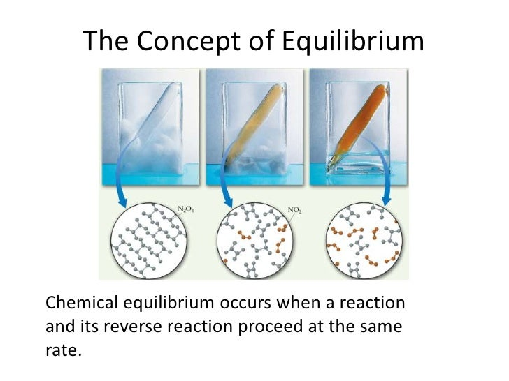 The Concept of Equilibrium<br />	Chemical equilibrium occurs when a reaction and its reverse reaction proceed at the same ...