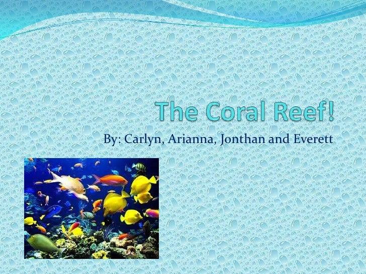 The Coral Reef!<br />By: Carlyn, Arianna, Jonthan and Everett <br />