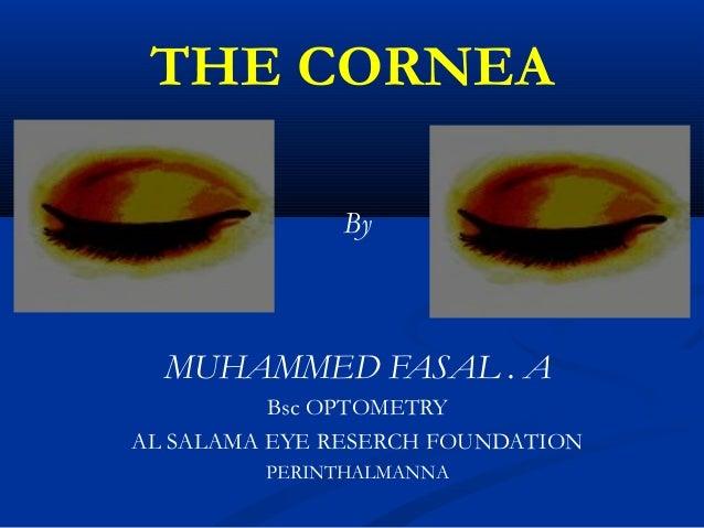 THE CORNEA By MUHAMMED FASAL . A Bsc OPTOMETRY AL SALAMA EYE RESERCH FOUNDATION PERINTHALMANNA