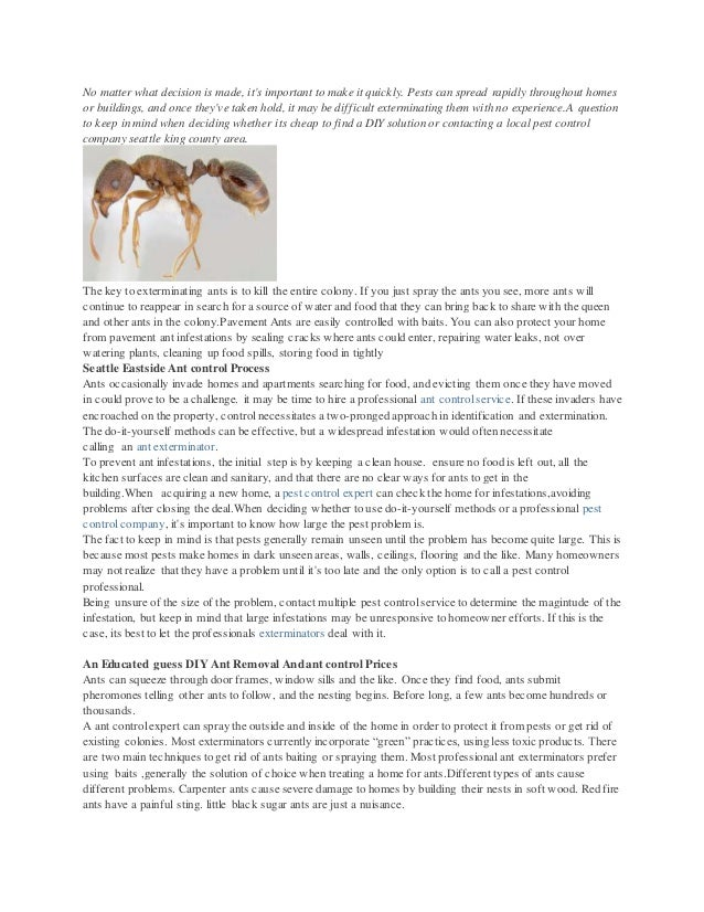 The cost of ant control extermination service versus do it yourself extermination service versus do it yourself no matter what decision is made its important to make it quickly solutioingenieria Images