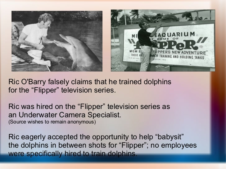 """Ric O'Barry falsely claims that he trained dolphins for the """"Flipper"""" television series. Ric was hired on the """"Flipper"""" te..."""