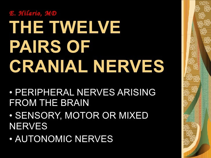 E. Hilario, MD THE TWELVE PAIRS OF CRANIAL NERVES <ul><li>PERIPHERAL NERVES ARISING FROM THE BRAIN </li></ul><ul><li>SENSO...