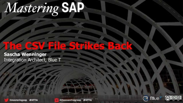 Sascha Wenninger Integration Architect, Blue T The CSV File Strikes Back