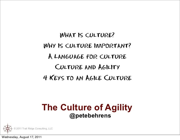 The Culture of Agility Slide 3