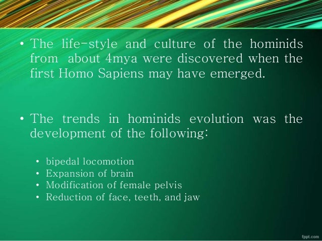 an analysis of the evolution of bipedalism for the early hominids The emergence of hominids become bipedal has without question was one of the biggest factors in the development of civilization if our early ancestors had never left the trees, we would not be where we are today, or they wouldn't have developed the way they did.