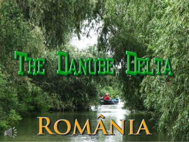The danube delta   romania (v.m.)