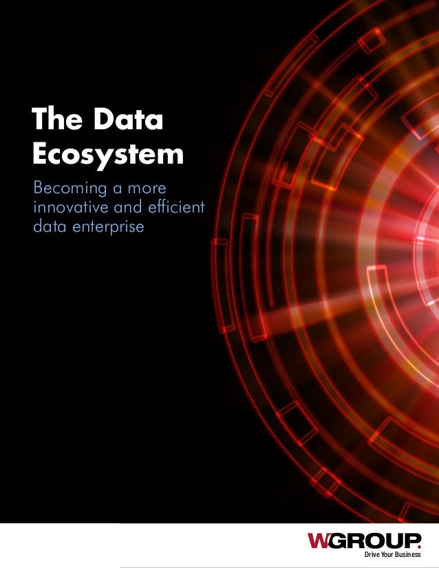 Drive Your Business The Data Ecosystem Becoming a more innovative and efficient data enterprise