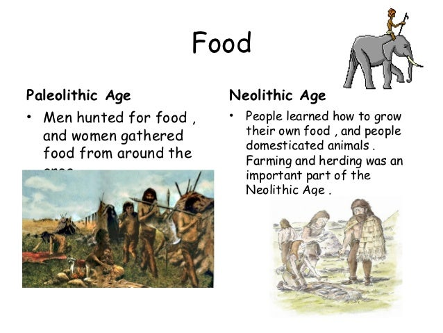 information about paleolithic age
