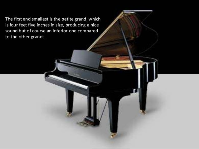 piano types Visit the piano learning center of the piano technicians guild at wwwptgorg for more fun ways to learn about the piano piano parts glossary.
