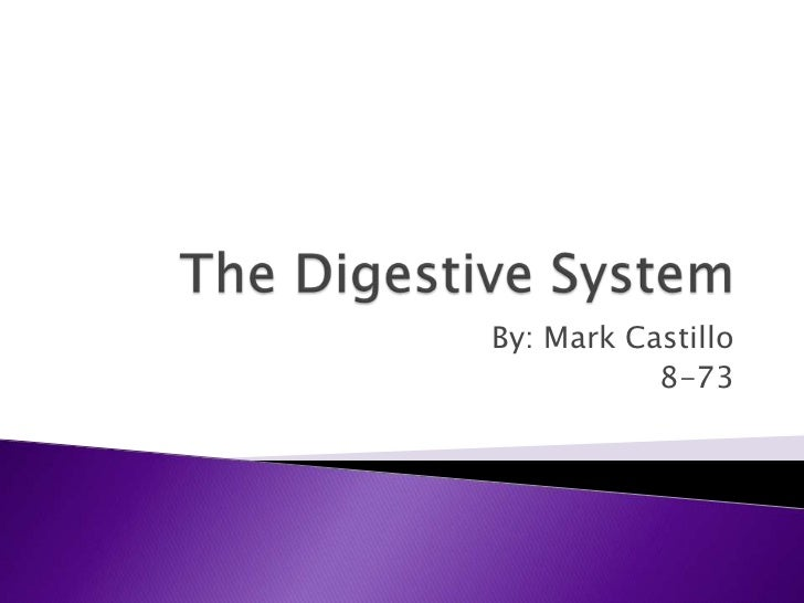 The Digestive System<br />By: Mark Castillo<br />8-73<br />