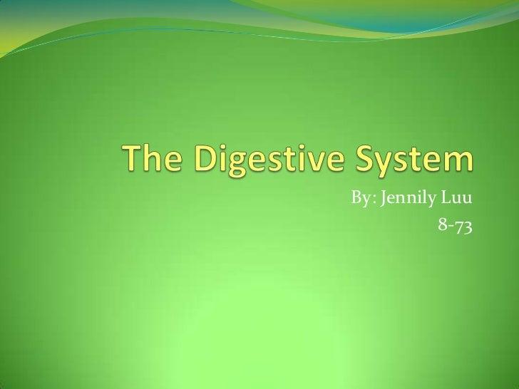 The Digestive System<br />By: Jennily Luu<br />8-73 <br />