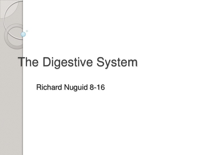 The Digestive System<br />Richard Nuguid 8-16<br />