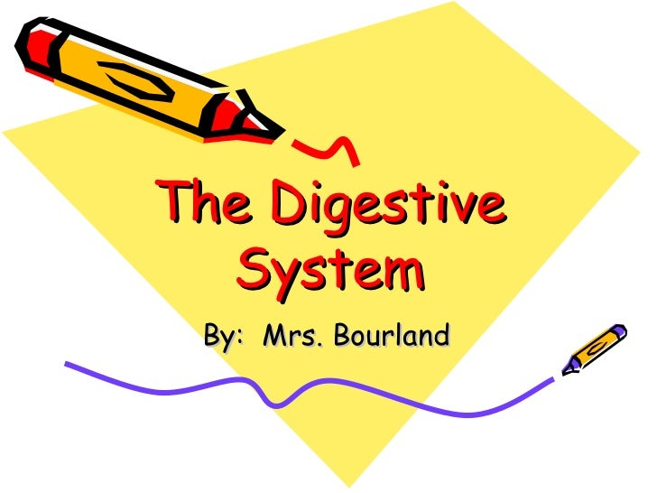 The Digestive System By:  Mrs. Bourland