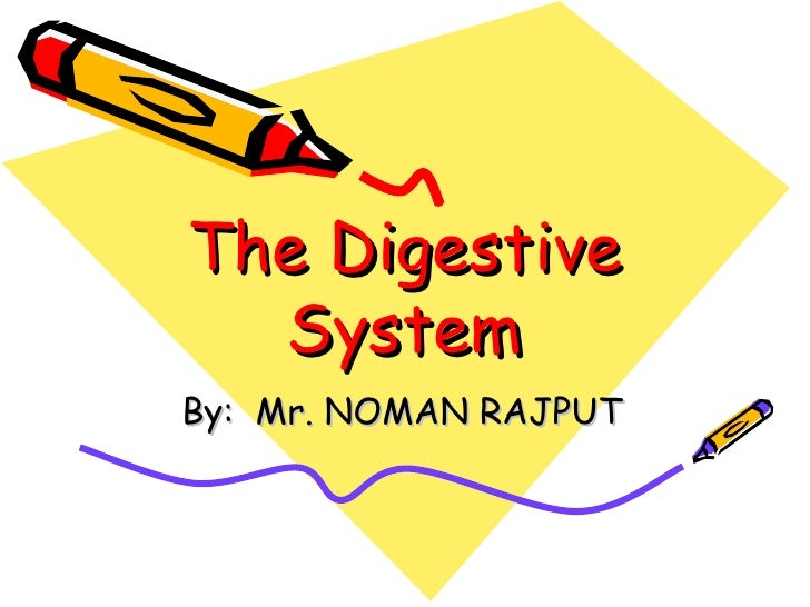 The Digestive System By:  Mr. NOMAN RAJPUT