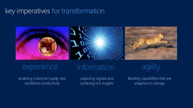 key imperatives for transformation experience information agility enabling customer loyalty and workforce productivity cap...