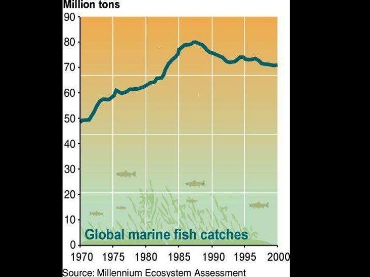 Depleted Fisheries<br />