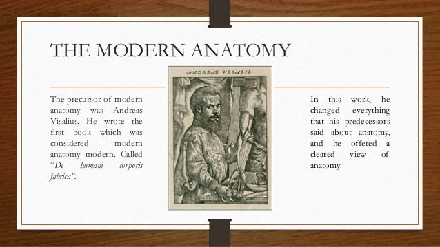 The discovery of human anatomy