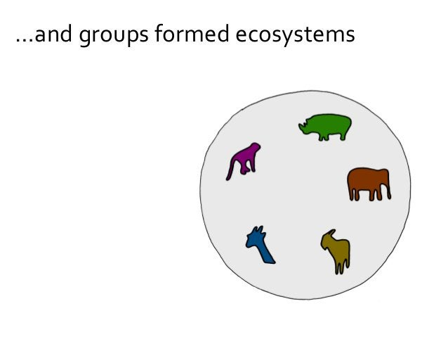 …and species formed groups