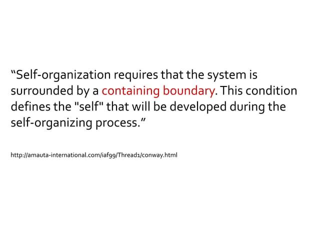 Agenda Self-organization Direction Delegation Communication Conclusion
