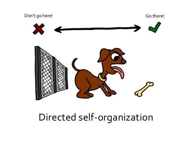 Self-organization is the norm