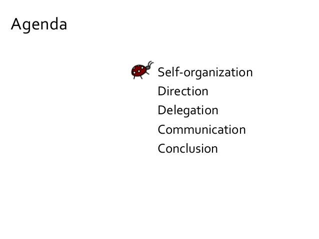 Goal #2 How can we make self-organization work?