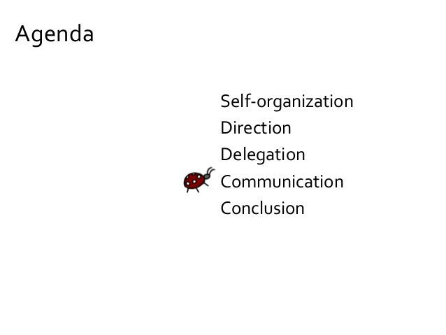 Manage top management (to protect the self-organizing system)