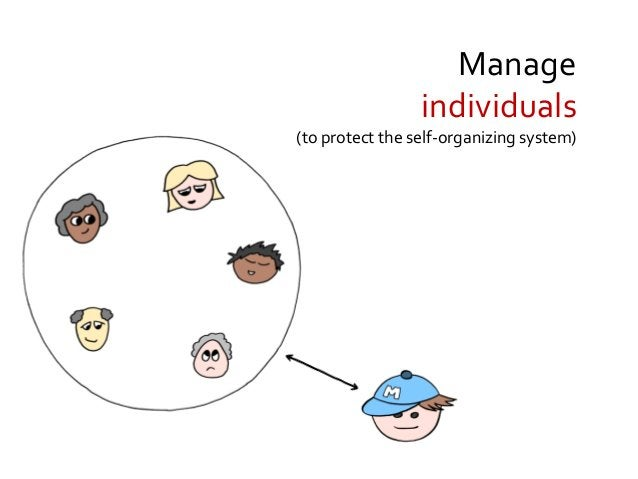 Manage the environment (to protect the self-organizing system)