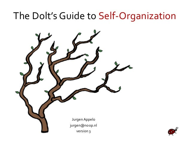 The Dolt's Guide to Self-Organization Jurgen Appelo jurgen@noop.nl version 3