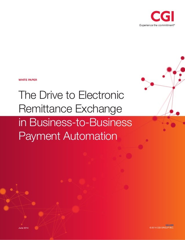 Experience the commitment® June 2014 The Drive to Electronic Remittance Exchange in Business-to-Business Payment Automatio...
