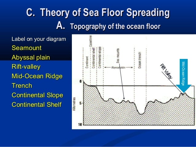 Atlantic ocean floor topography lab carpet review for Atlantic ocean floor topography lab