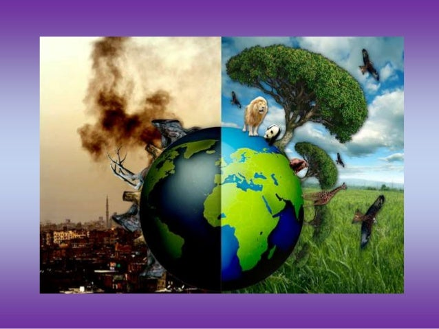 a discussion on the pollution on planet earth Although the top 10 environmental issues that face the planet can be at best subjective we a discussion on the pollution on planet earth have attempted to aggregate.
