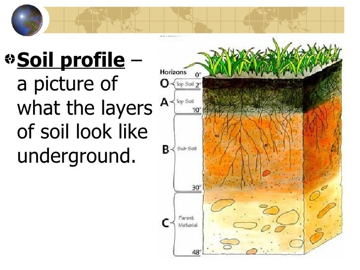 The earth s crust 9 soil for What are the different layers of soil