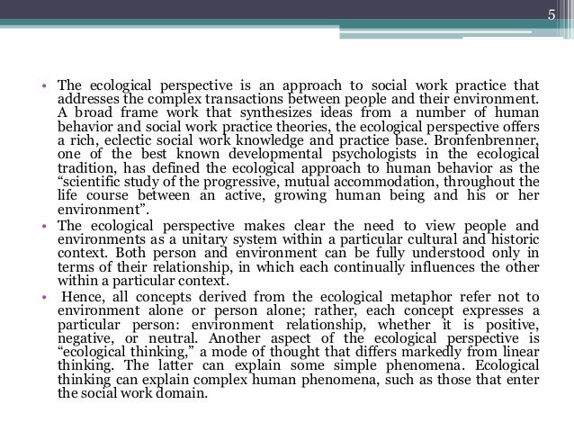 The Ecological Perspective In Social Work