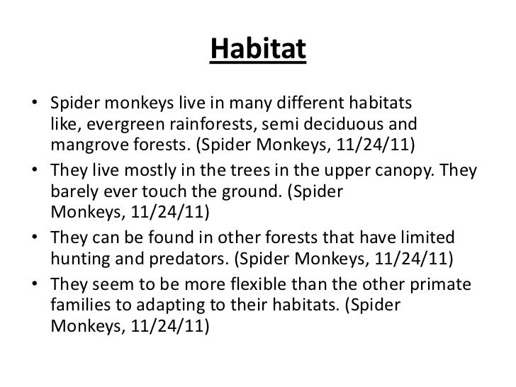 The Ecology Ofspidermonkeys