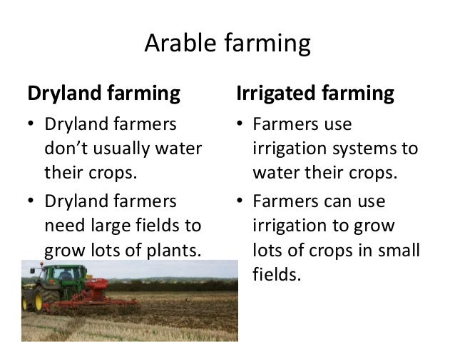 Arable farming Dryland farming • Dryland farmers don't usually water their crops. • Dryland farmers need large fields to g...