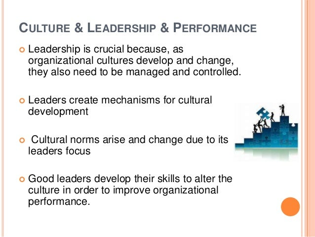 Order a paper on culture and organizational performance