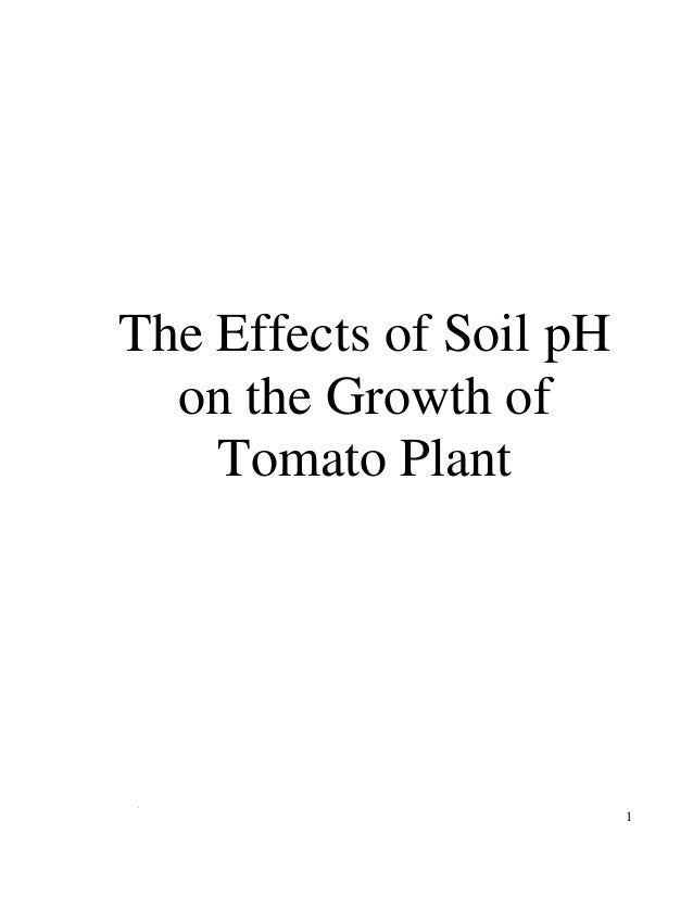 1The Effects of Soil pHon the Growth ofTomato Plant1