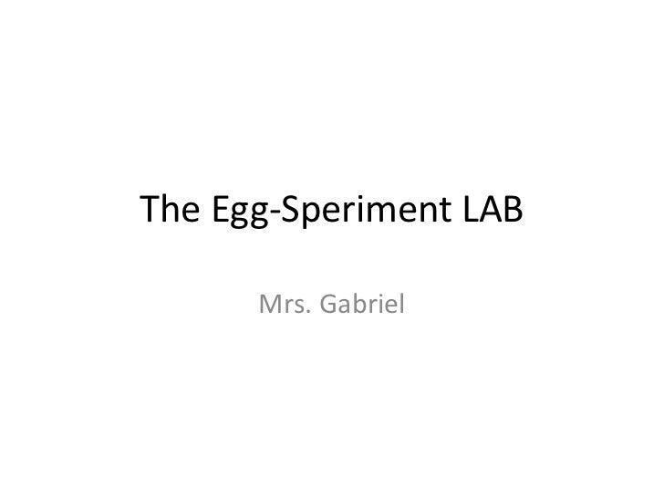 The Egg-Speriment LAB<br />Mrs. Gabriel<br />