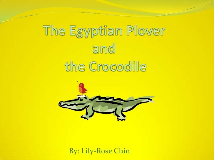 The Egyptian Plover and the Crocodile <br />By: Lily-Rose Chin<br />