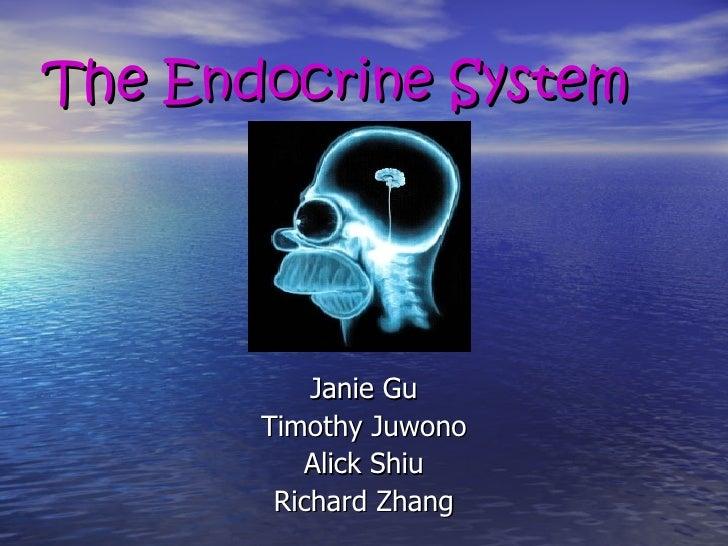 The Endocrine System <ul><li>Janie Gu </li></ul><ul><li>Timothy Juwono </li></ul><ul><li>Alick Shiu </li></ul><ul><li>Rich...