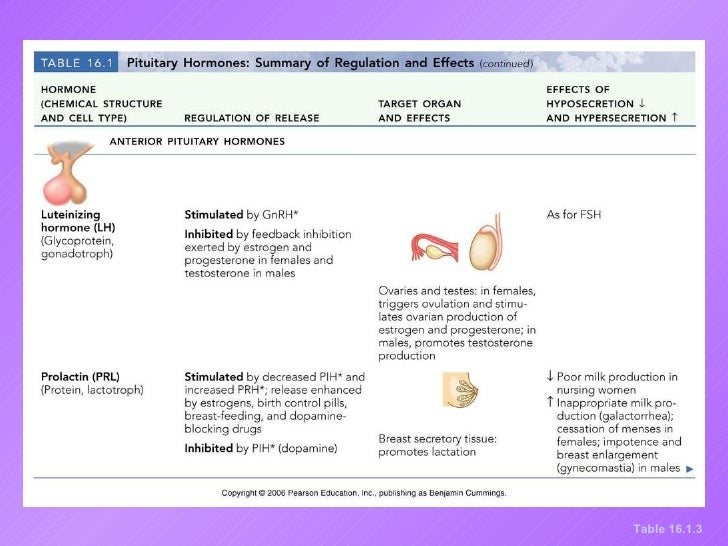 adrenocorticosteroids drugs examples