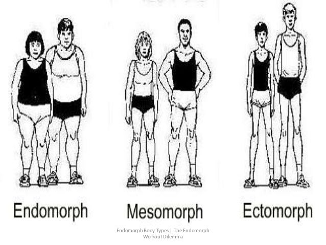 types of somatotypes Using measurements and calculations he categorized the human body types into three basic sub-categories this basic theory indicated that each human being, whether male or female, inhibits natural body tendencies that may be classified into the somatotypes known as.